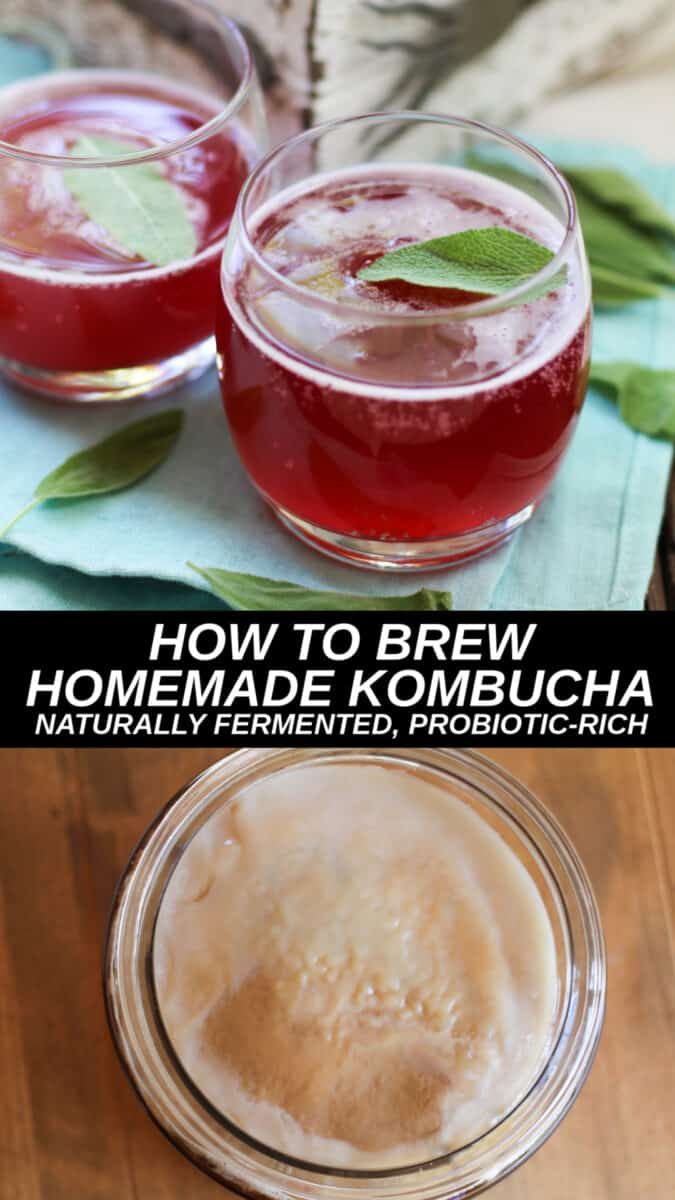 Learn how brew kombucha at home using a SCOBY and black tea. Complete with instructions on how to properly do a secondary fermentation. Rejoice in the art of naturally fermented probiotic drinks!