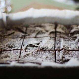 Garbanzo Bean Brownies (gluten-free)