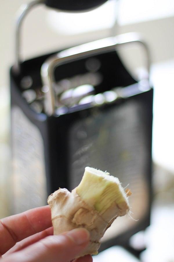 Jalapeno Ginger Cauliflower Rice (paleo friendly) | https://www.theroastedroot.net