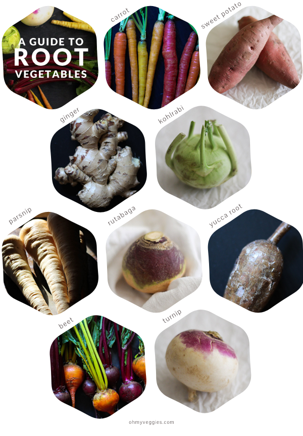 A Guide to Root Vegetables | www.theroastedroot.net