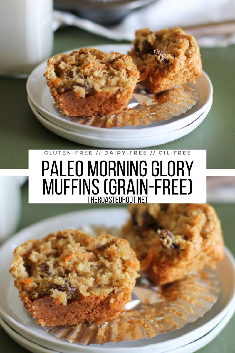 Paleo Morning Glory Muffins - grain-free, dairy-free, refined sugar-free, and healthy
