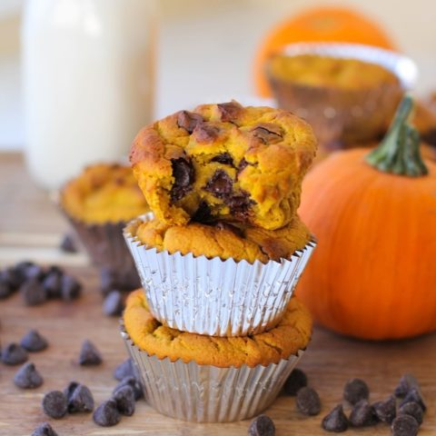 Grain-Free Chocolate Chip Pumpkin Muffins made with coconut flour and sweetened with honey (or pure maple syrup) - healthy enough to eat for breakfast! #muffin #recipe #almostpaleo #glutenfree