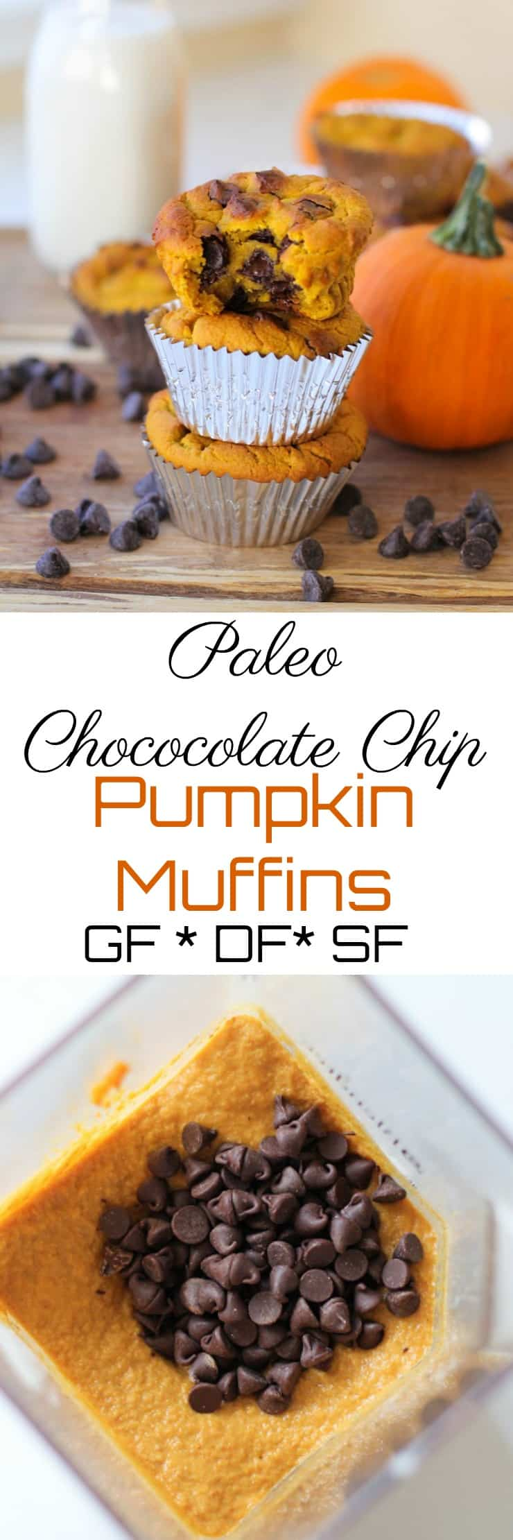 Paleo Chocolate Chip Muffins - grain-free, dairy-free, refined sugar-free, and healthy!