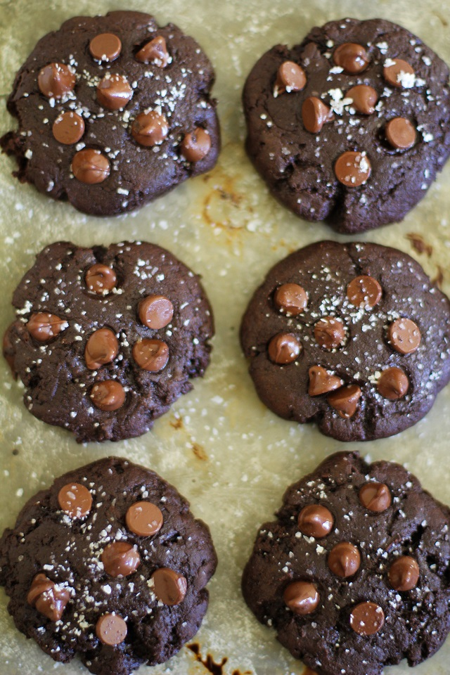 Grain-Free Salted Double Chocolate Buckwheat Cookies - a super rich gluten-free dessert! TheRoastedRoot.net
