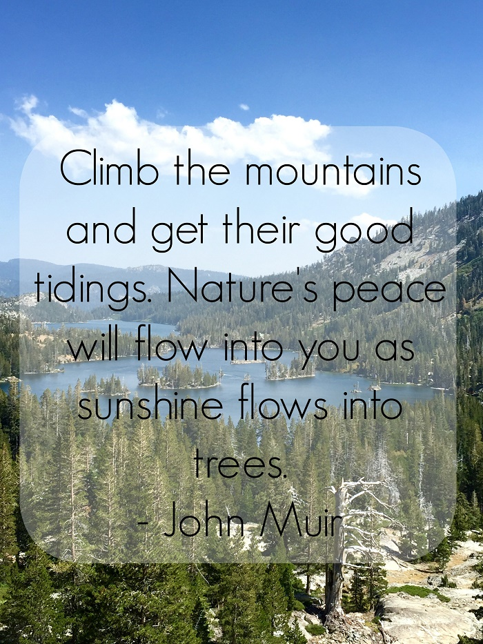 """Climb the mountains and get their good tidings. Nature's peace will flow into you as sunshine flows into trees."" - John Muir #EarthDay #quote #nature"