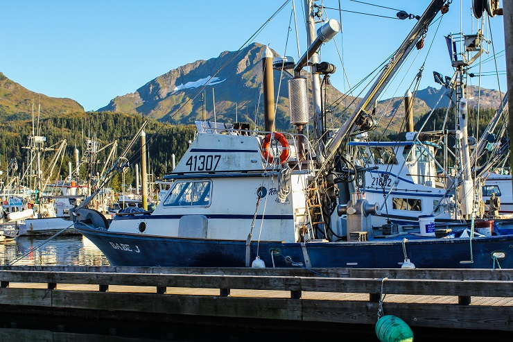 Cordova, Alaska | TheRoastedRoot.net #travel #copperriversalmon #knowyourfisherman #sustrainablesalmon