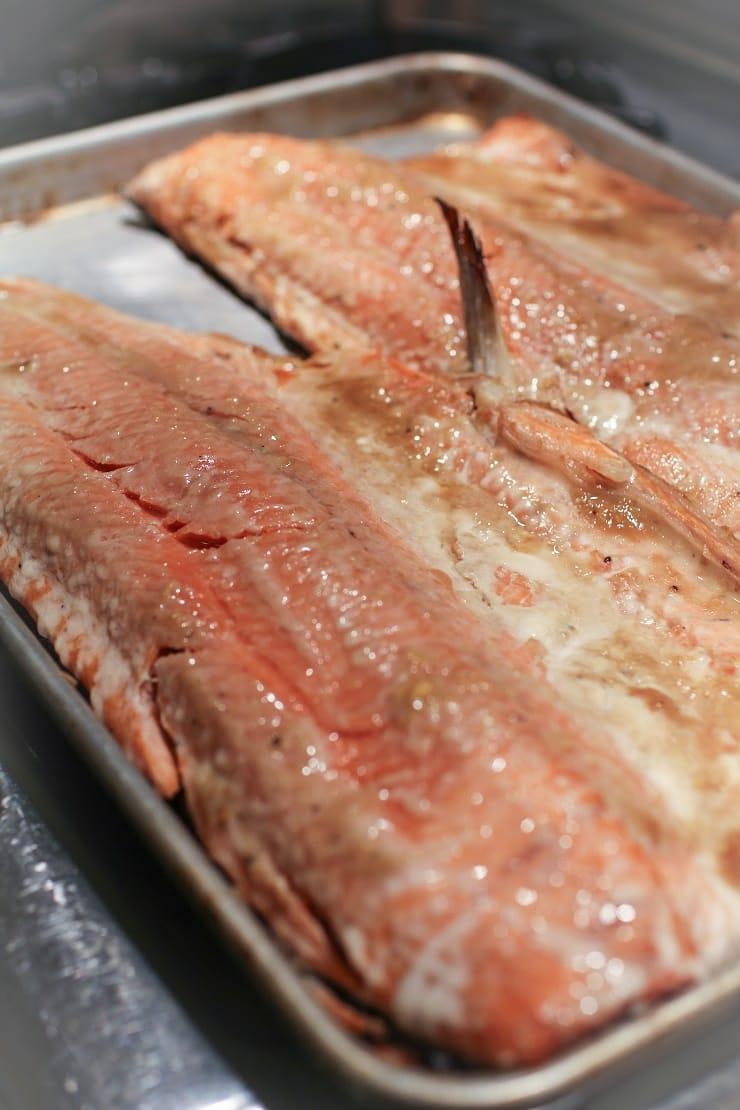 Miso Coho Salmon