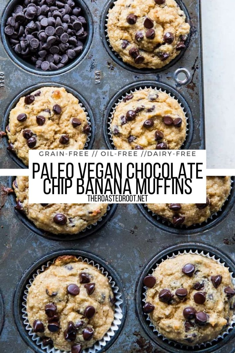 Paleo Vegan Banana Muffins with chocolate chips - grain-free, oil-free, refined sugar-free, healthy muffin recipe