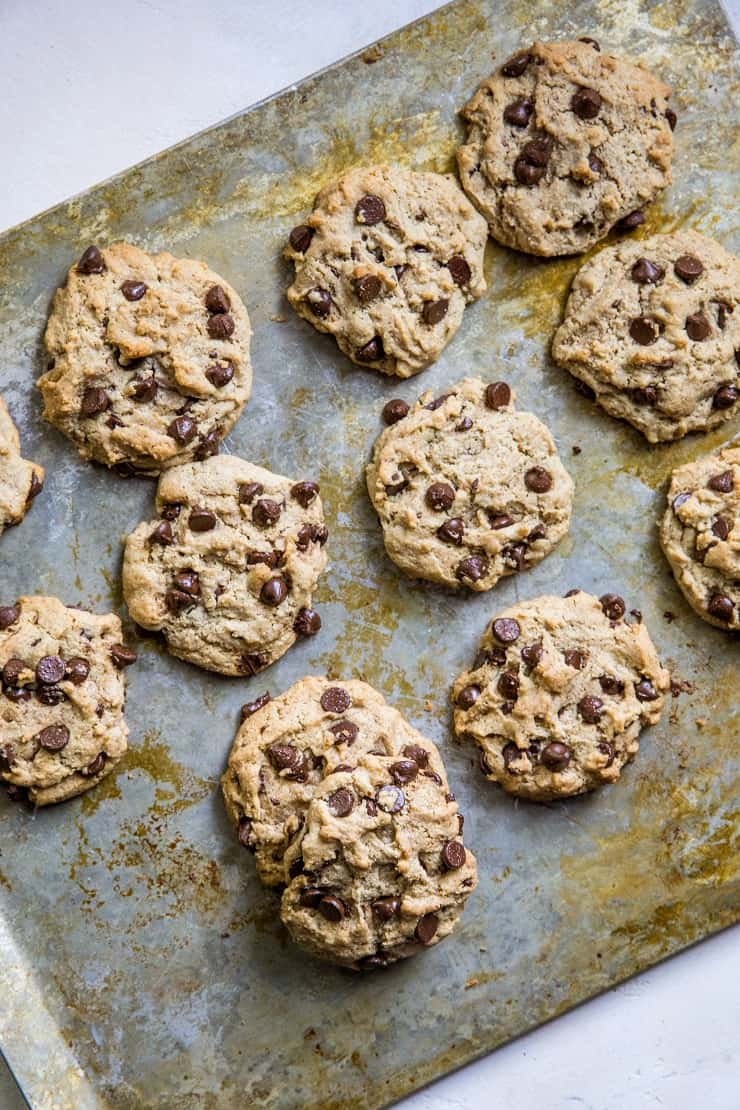 Paleo Vegan Chocolate Chip Cookies made with almond flour and flax seed - refined sugar-free, dairy-free, egg-free healthy chocolate chip cookies