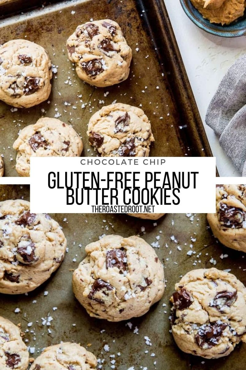 Chocolate Chip Gluten-Free Peanut Butter Cookies are amazing crowd pleasers for sharing with friends and family! Refined sugar-free with coconut sugar, these cookies are healthier than the classic