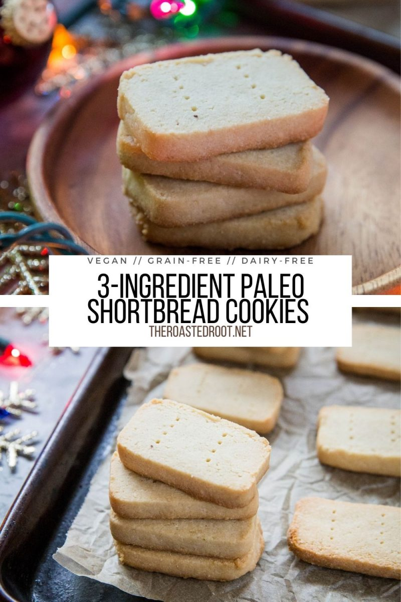 3-Ingredient Paleo Shortbread Cookies (Vegan) - grain-free, egg-free, gluten-free, dairy free Christmas cookies