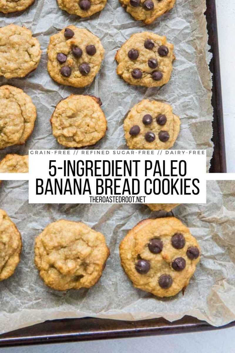 5-Ingredient Paleo Banana Bread Cookies - easy, healthy dessert recipe that is grain-free, refined sugar-free, dairy-free and delicious!