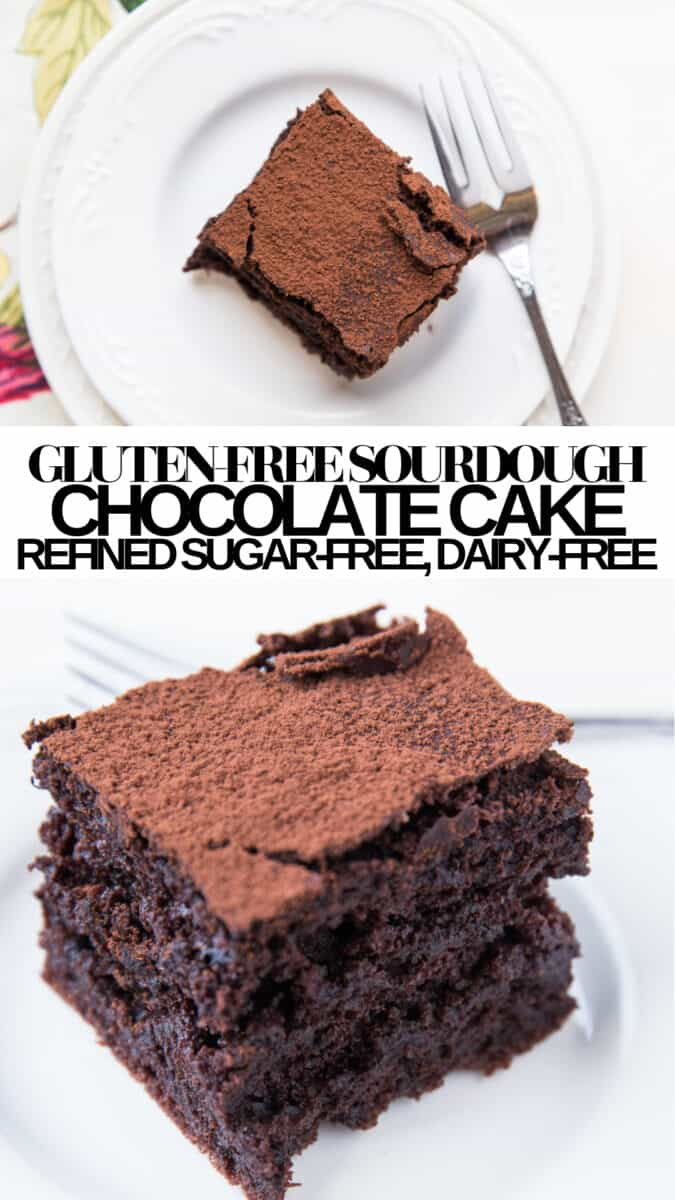 Gluten-Free Sourdough Chocolate Cake - refined sugar-free, dairy-free, crazy light and fluffy yet moist!!