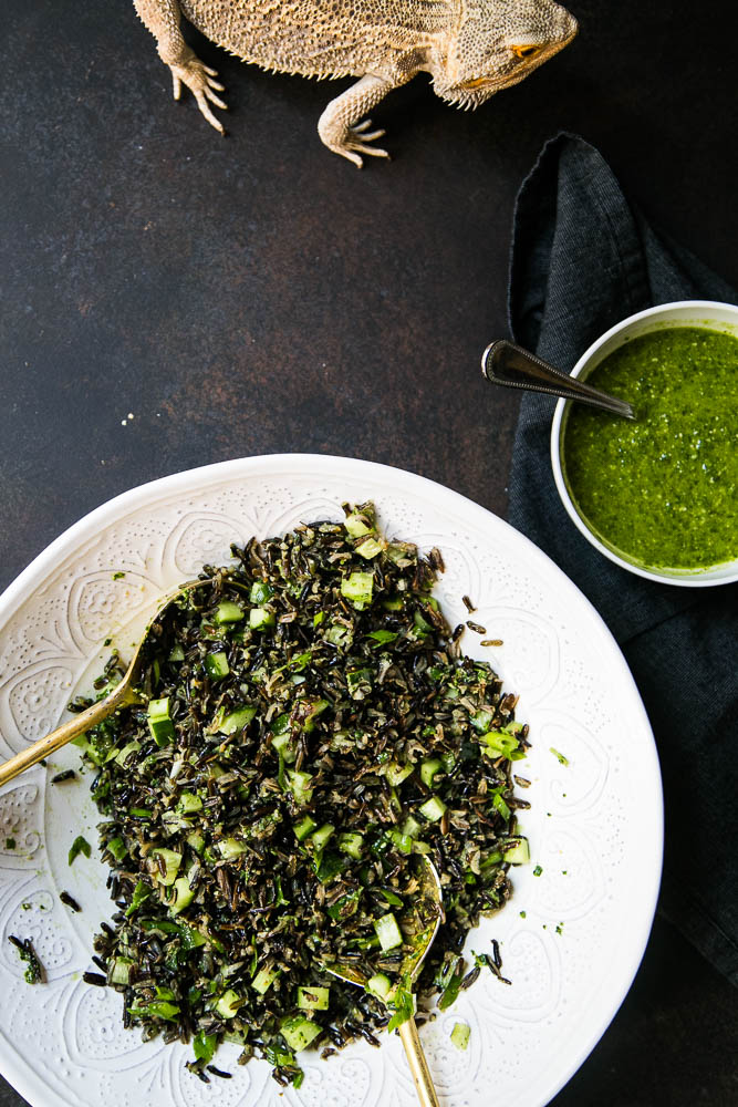 Wild Rice and Cucumber Salad with Pesto